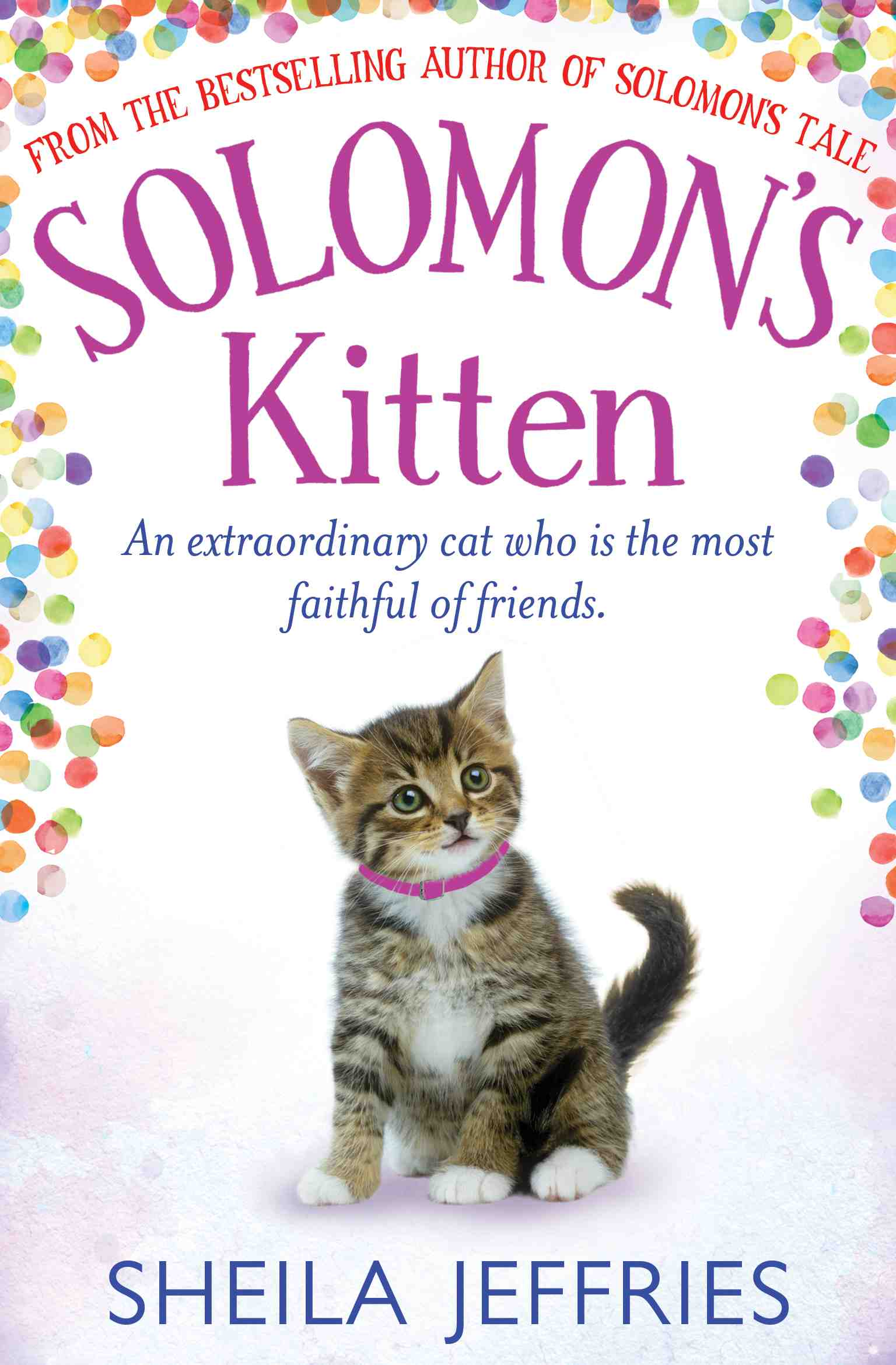 Sheila Jeffries - Solomon's Kitten